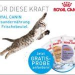 KOSTENLOSE Produktprobe Royal Canin-Katzenfutter