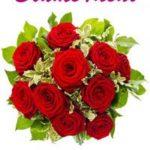 TOP-Angebot von Blume Ideal: 40 bunte Gerbera 50 cm Länge nur 14,99 EUR!