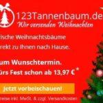 Bestellen Sie Ihren Weihnachtsbaum online mit Rabatt