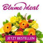 Günstige Blumen bei Blume Ideal: 42 bunte Rosen 18,99 EUR (statt 41,99)!