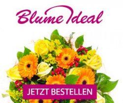 Günstige Blumen bequem online kaufen mit den Aktionsangeboten von Blume Ideal! Regelmäßig warten tolle Angebote zum kleinen Preis.