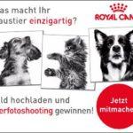 Royal Canin Gewinnspiel: Fotoshooting zu gewinnen