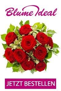 Jetzt den Herzmenschen mit roten Rosen Überraschen. Zeigen Sie Ihre Liebe und schenken Sie 30 Rosen für nur 15,99 EUR im Angebot!