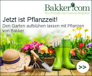 Blumen pflanzen ist mit Bakker attraktiv: Gutscheine und Rabatte locken mit günstigen Preisen. KOSTENLOS erhalten Sie eine Schere und eine Solarlampe.