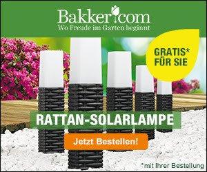 Blumen pflanzen ist mit Bakker attraktiv: Gutscheine und Rabatte locken mit günstigen Preisen. KOSTENLOS erhalten Sie eine Schere und eine Solarlampe.