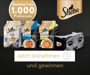 Sheba verlost unter allen Teilnehmern dieses Gewinnspiel insgesamt1.000 Pakete mit Sheba- Produkten und einer Cardboard VR Brille.