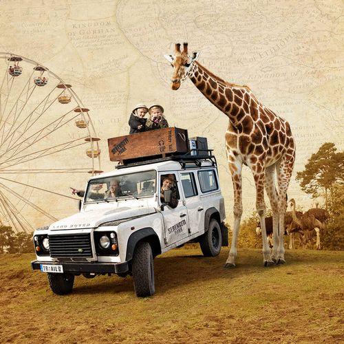 Serengeti Park 500×500