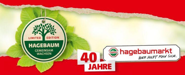 Hagebaumarkt gratis Rotbuche
