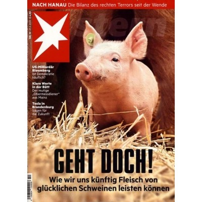 Stern-Magazin