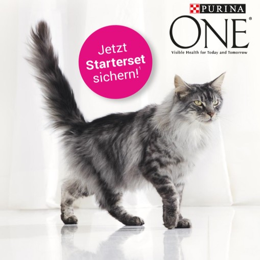 Purina One Starterset