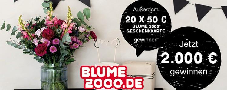 Blume 2000 Gewinnspiel