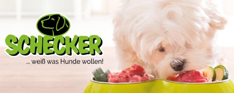 Doggy Dinner von Schecker