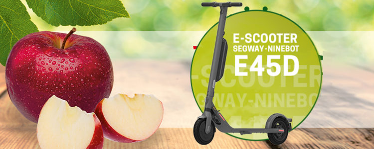 Elbe Obst verlost E-Scooter